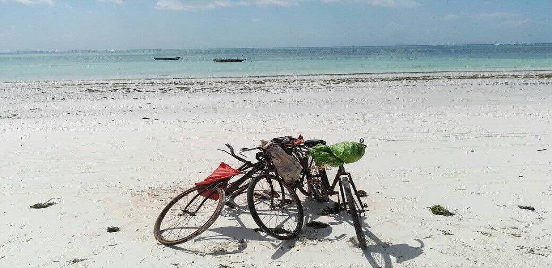 Cycles beach zanzibar